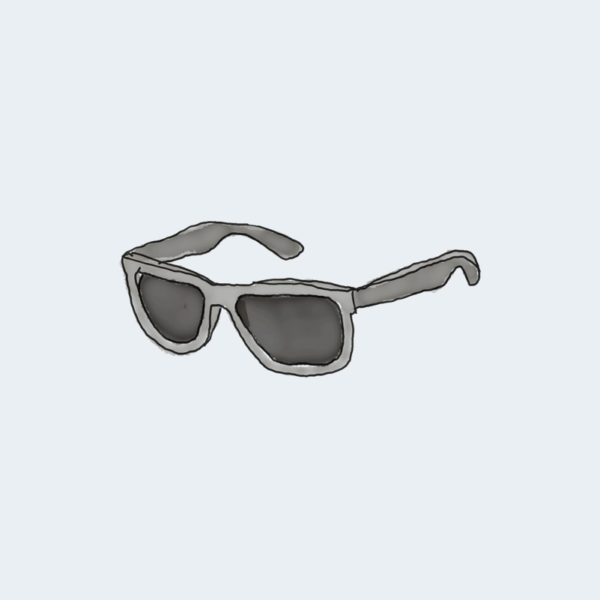 Grand Rapids Sunglasses